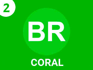 Coral Stereo